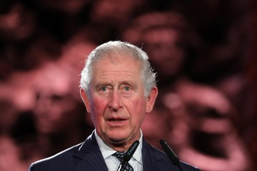 """Prince Charles says """"dangerously narrow window"""" to accelerate climate action"""