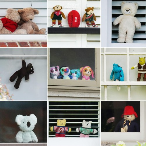 Photo Story: Teddy bear hunt to entertain children during coronavirus lockdown