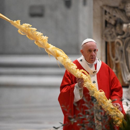 Photo Story: Pope Francis celebrates Palm Sunday Mass