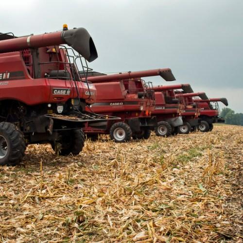 Ukraine's top grain producing region may cut 2020 grain output by 70%
