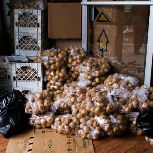 U.S. farmers hand out potatoes to avoid food waste