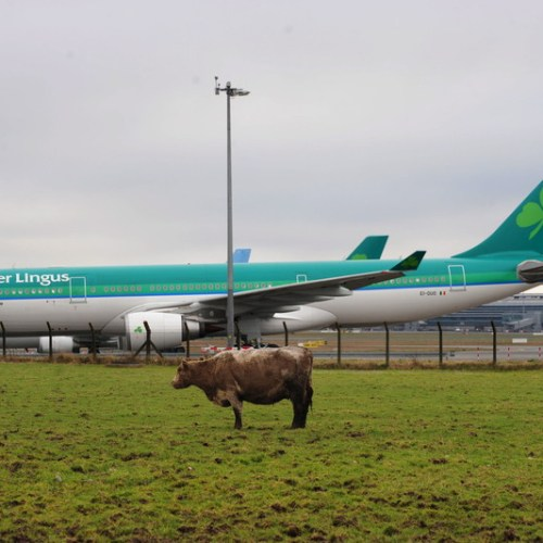 Health officials warn new Irish PM over reopening air travel