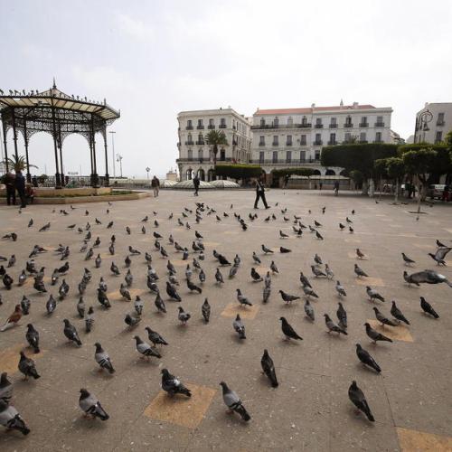 Algeria relaxes coronavirus lockdown