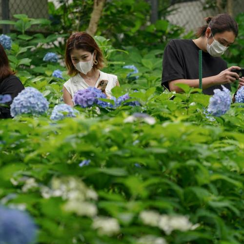 Tokyo registers more than 100 more coronavirus cases