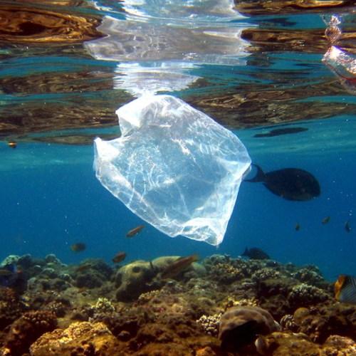 Amount of plastic in the Atlantic Ocean has been 'massively underestimated'