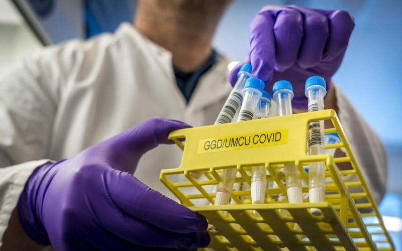 Europe's Covid-19 cases, hospitalisations head in wrong direction: WHO