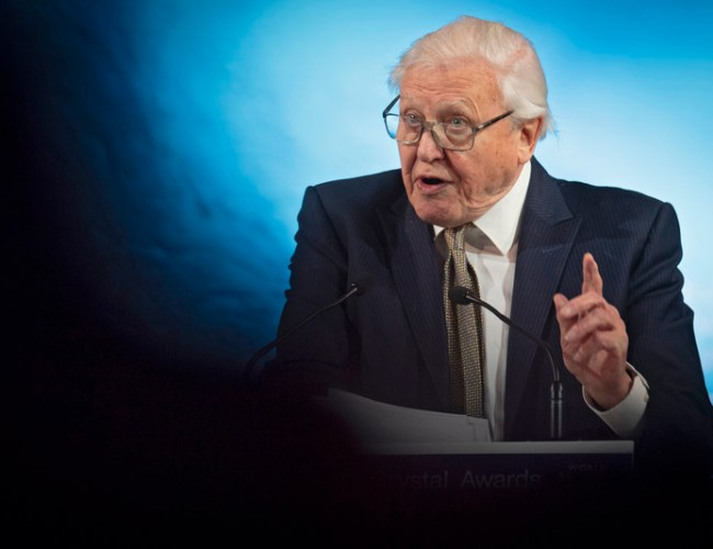 David Attenborough leads call for world to invest $500 bln a year to protect nature