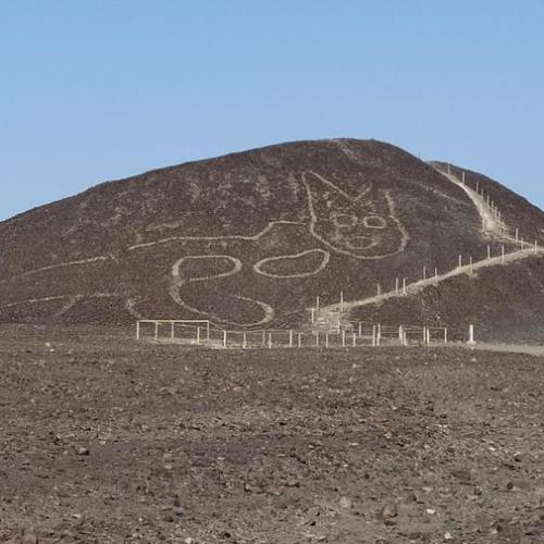 Photo Story: A new figure found among the Nazca Lines