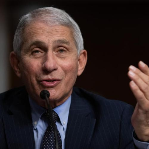 Fauci says he expects no new U.S. lockdowns despite surging Delta cases
