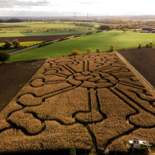 Photo Story: Coronavirus labyrinth in Soest, Germany
