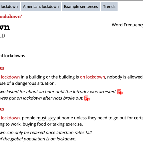 """""""Lockdown"""" declared 2020 word of the year by Collins dictionary"""