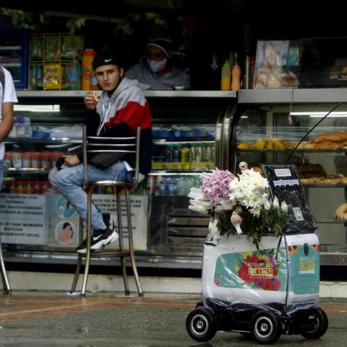 Photo Story: Flowers via robot for Medellin Flower Fair