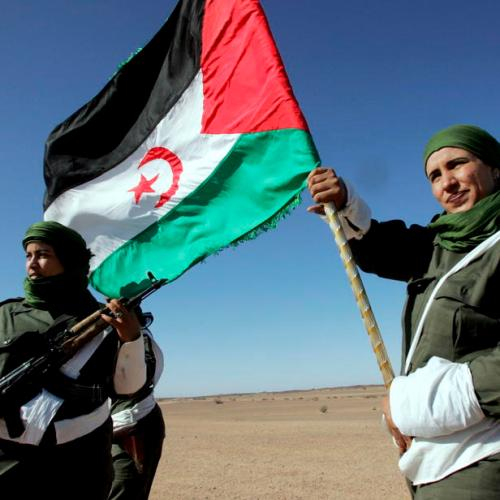 Polisario leader says Western Sahara ceasefire with Morocco is over