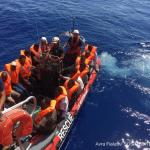 Austria snubs EU plea to accept Lampedusa migrants