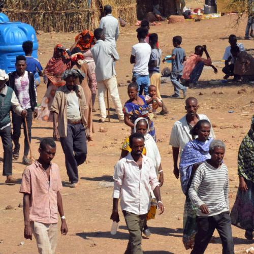 Ethiopia war may turn into guerrilla insurgency, experts say