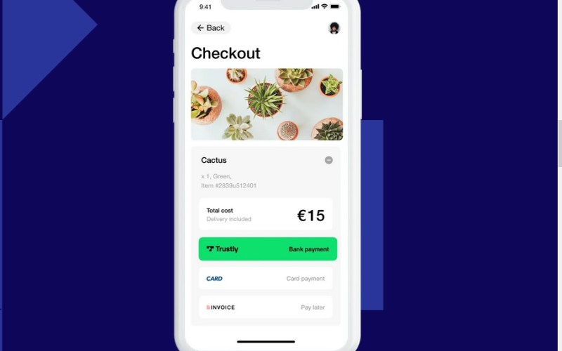 Sweden's Trustly plans $11 billion IPO as digital payments boom