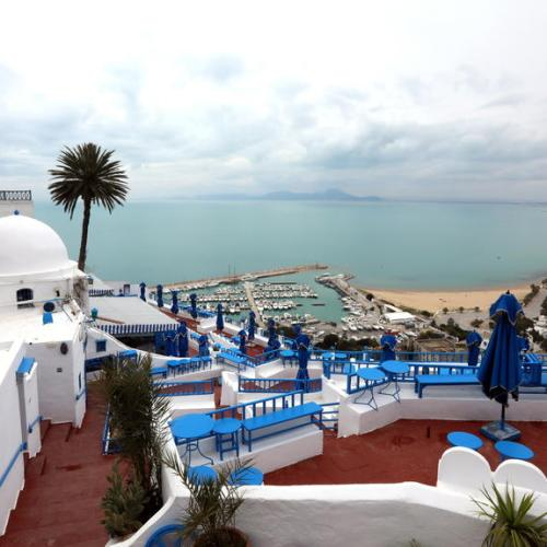 Pandemic drives down Tunisia's tourism revenue by 65%