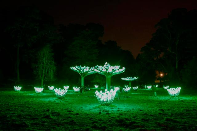 Photo Story: Art installation marks Golden Gate Park's 150th anniversary in San Francisco