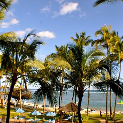 Armed man fires shots in Hawaii hotel, barricades himself inside room – report