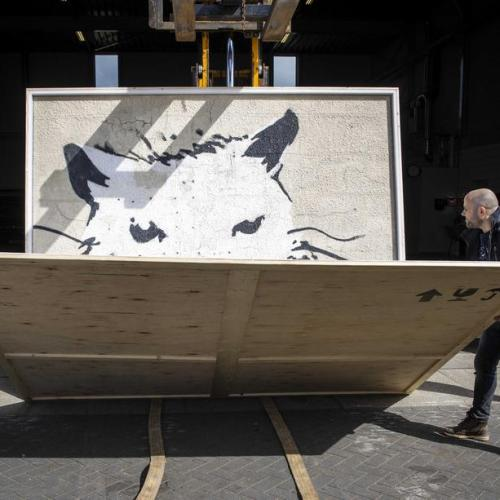 Photo Story: Colossal Banksy arrives in the Netherlands to be auctioned