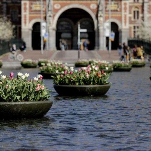 Photo Story: Tulip Festival in Amsterdam
