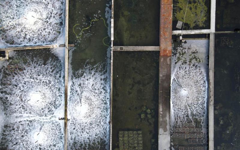 EPA's Eye in the Sky: Yerseke, The Netherlands