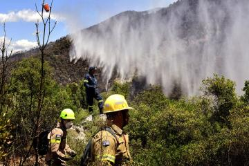 Main front of forest fire near Athens under control