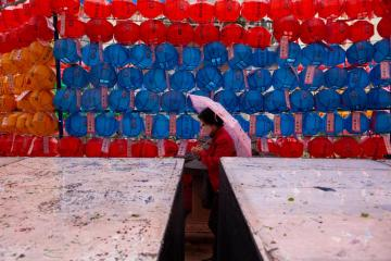 Photo Story – Preparations for upcoming Buddha's birthday, in Seoul