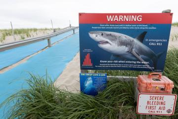 Photo Story: Shark Warning signs Cape Cod