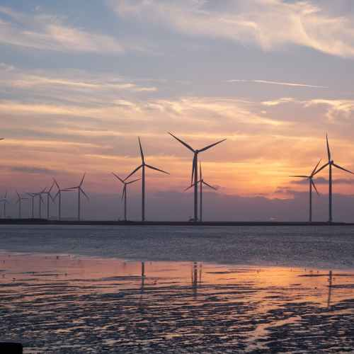 U.S. explores wind energy potential in Gulf of Mexico