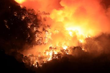 EU helps Italy, Greece, Albania and North Macedonia to fight 'devastating' forest fires