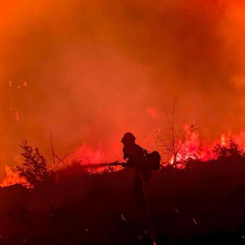 Evacuations ordered after two California wildfires converge into one