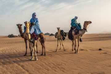 Algeria recalls ambassador to Morocco in row over Western Sahara