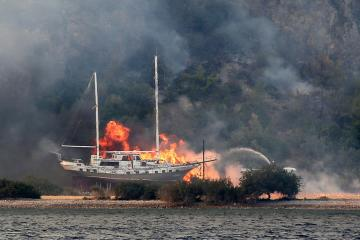 Wildfire put out at Turkish power plant
