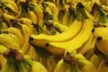Montenegro seizes over a tonne of cocaine in bananas shipment