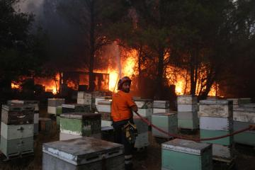 Photo Story – Major fire breaks out in Varybobi, Attica
