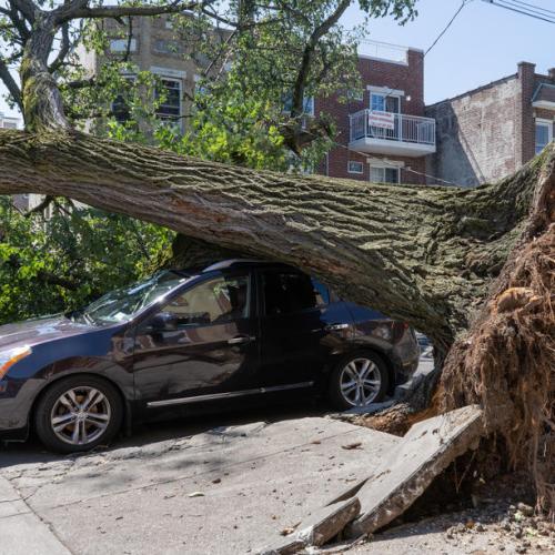 Ida's record rain floods New York-area homes, subways; at least 44 dead; Biden calls emergency