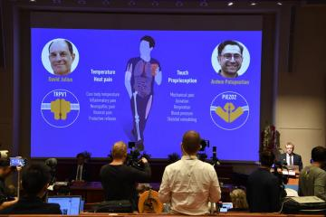 UPDATED: Julius and Patapoutian win 2021 Nobel Prize in Medicine