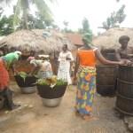 Figure 3: Entretien avec ungroupement producteur de l'huile de palme à Ayomi