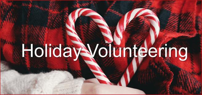 Holiday Volunteering 2020