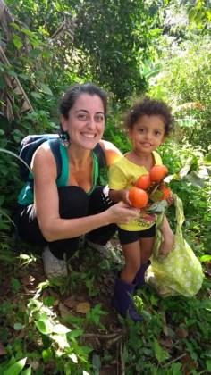 agricultura_organica_periferia_mertopole