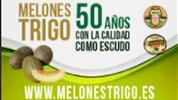 melones-trigo