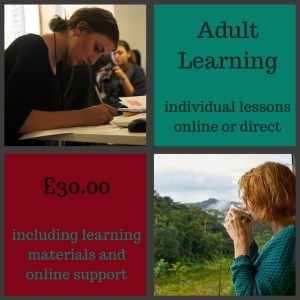 adult tuition fees