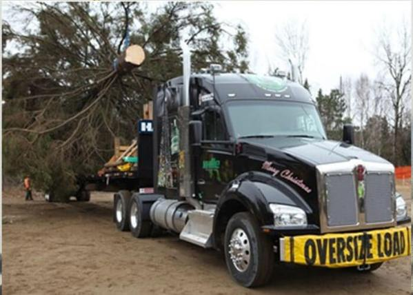 Kenworth T880 To Deliver U.S. Capitol Christmas Tree
