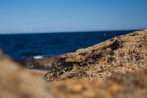 Rocks over looking the ocean