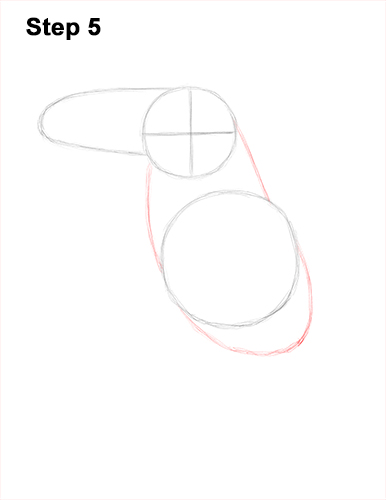How To Draw A Toucan Keel Billed