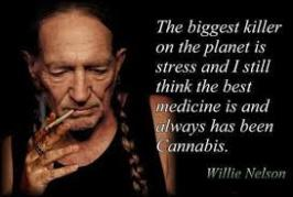 Interesting Funny Marijuana Quotes