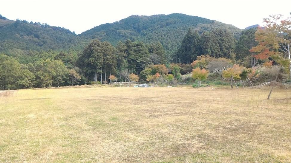 f:id:Daisuke-Tsuchiya:20151015165434j:plain