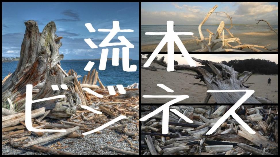 f:id:Daisuke-Tsuchiya:20160728122957j:plain