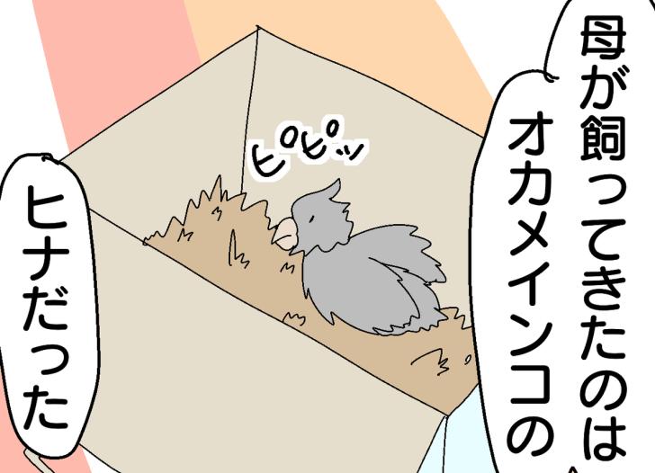 f:id:YuruFuwaTa:20191213160643p:plain